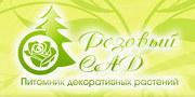 Продажа саженцев роз оптом розница с доставкой в Волгоград и России