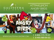 Весёлая ирга Angry Birds